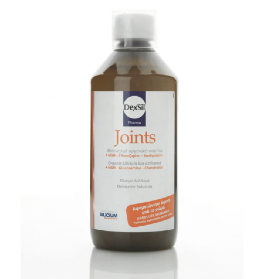 Dexsil Joints + MSM Oral 500ml