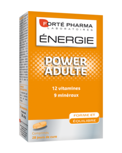 FORTE PHARMA Energy Power Adulte 28tabs