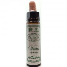 DR.BACH Ainsworths Walnut 10ml