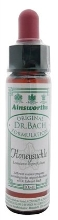 DR.BACH Ainsworths Honeysuckle 10ml