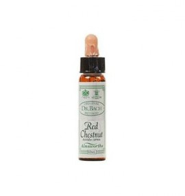 DR.BACH Ainsworths Red Chestnut 10ml