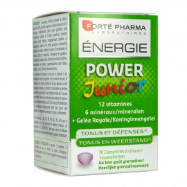 FORTE PHARMA ENERGY POWER JUNIOR 30 ΔΙΣΚΙΑ